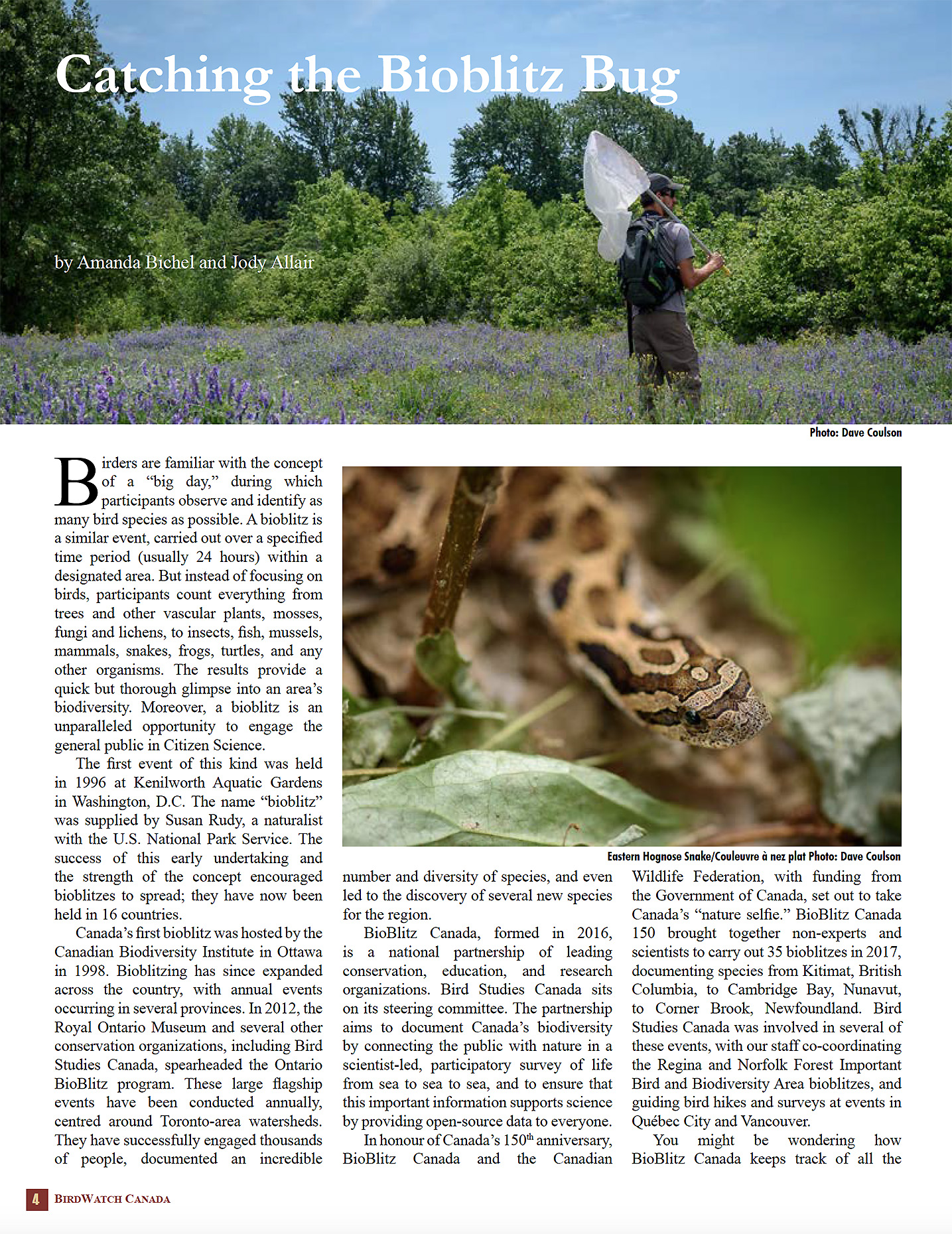 Bird Studies Canada newsletter on bioblitz