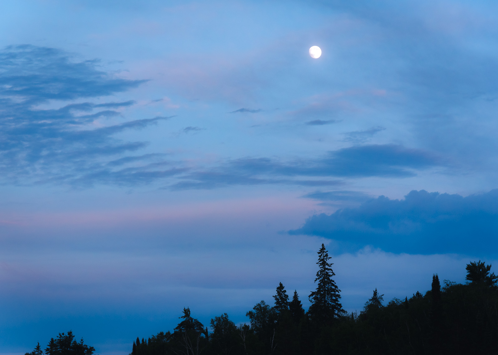 Moonlit sky at dusk with forest in the background in Algonquin Park on Lake Opeongo