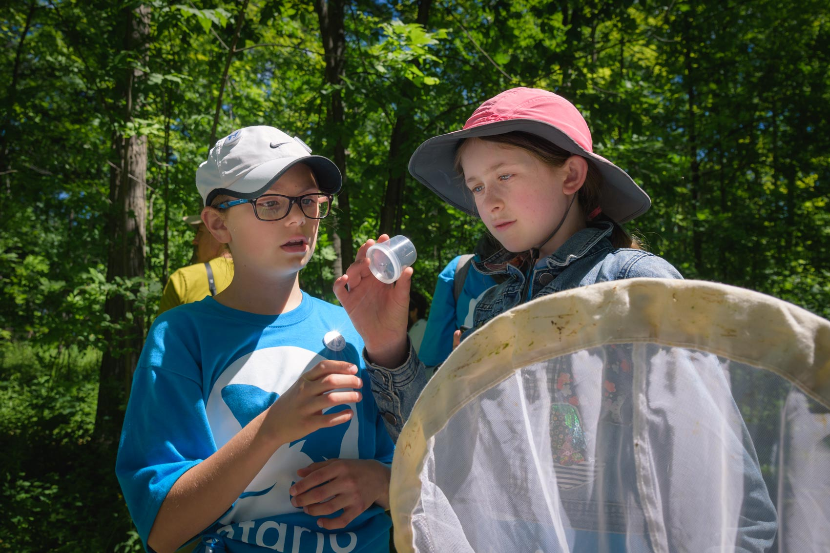 Two girls looking a bee in a container at a BioBlitz