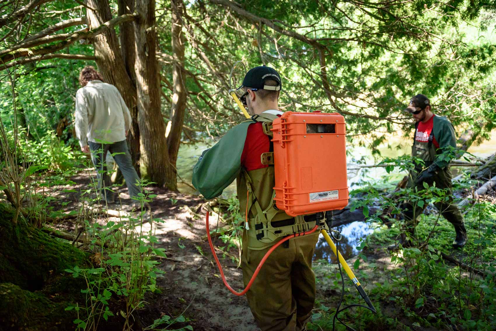 A researcher with an electrofishing backpack walking through a forest