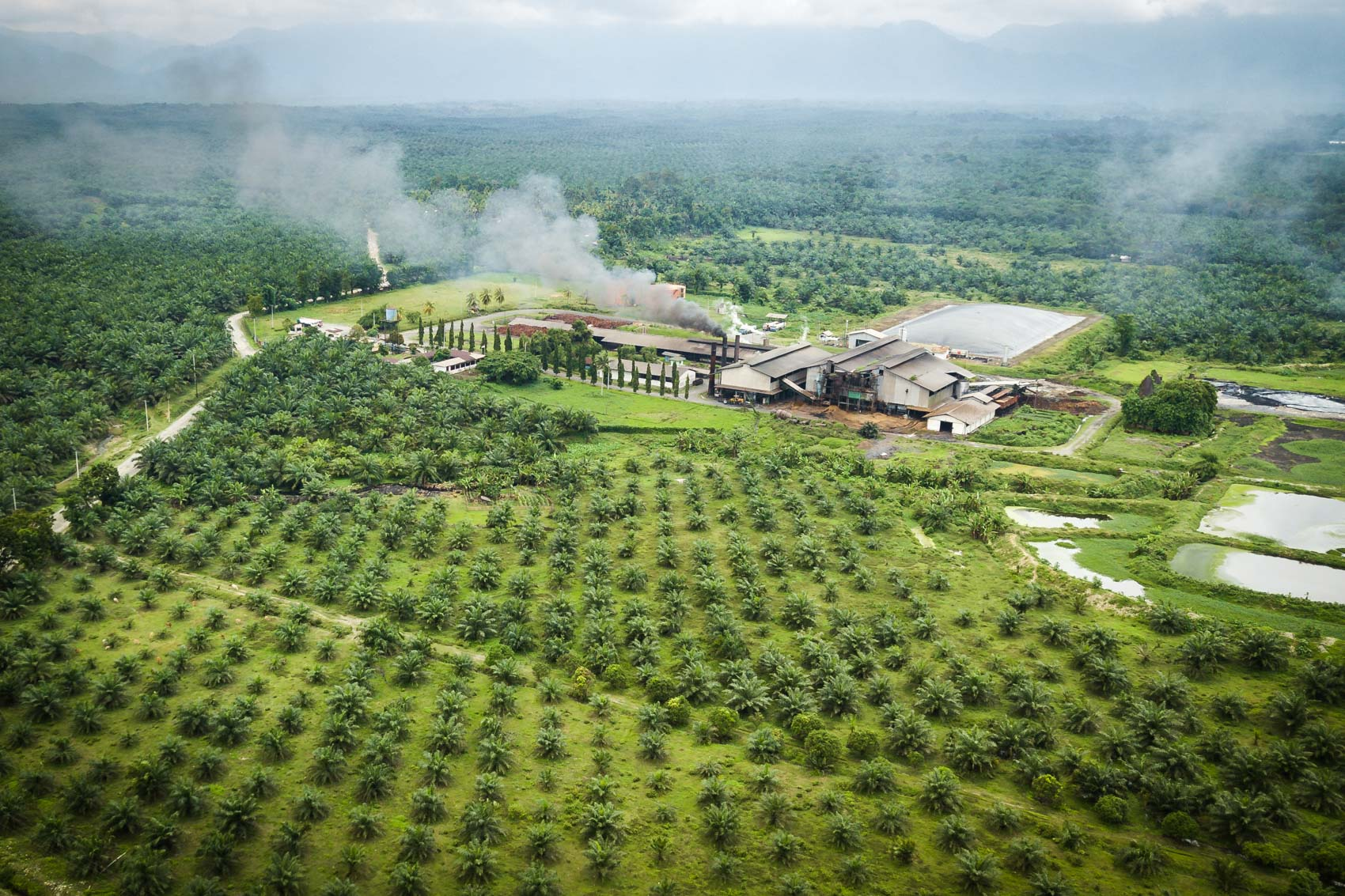 Aerial view of a palm oil extraction mill in Northern Sumatra, Indonesia © David Coulson conservation photojournalist