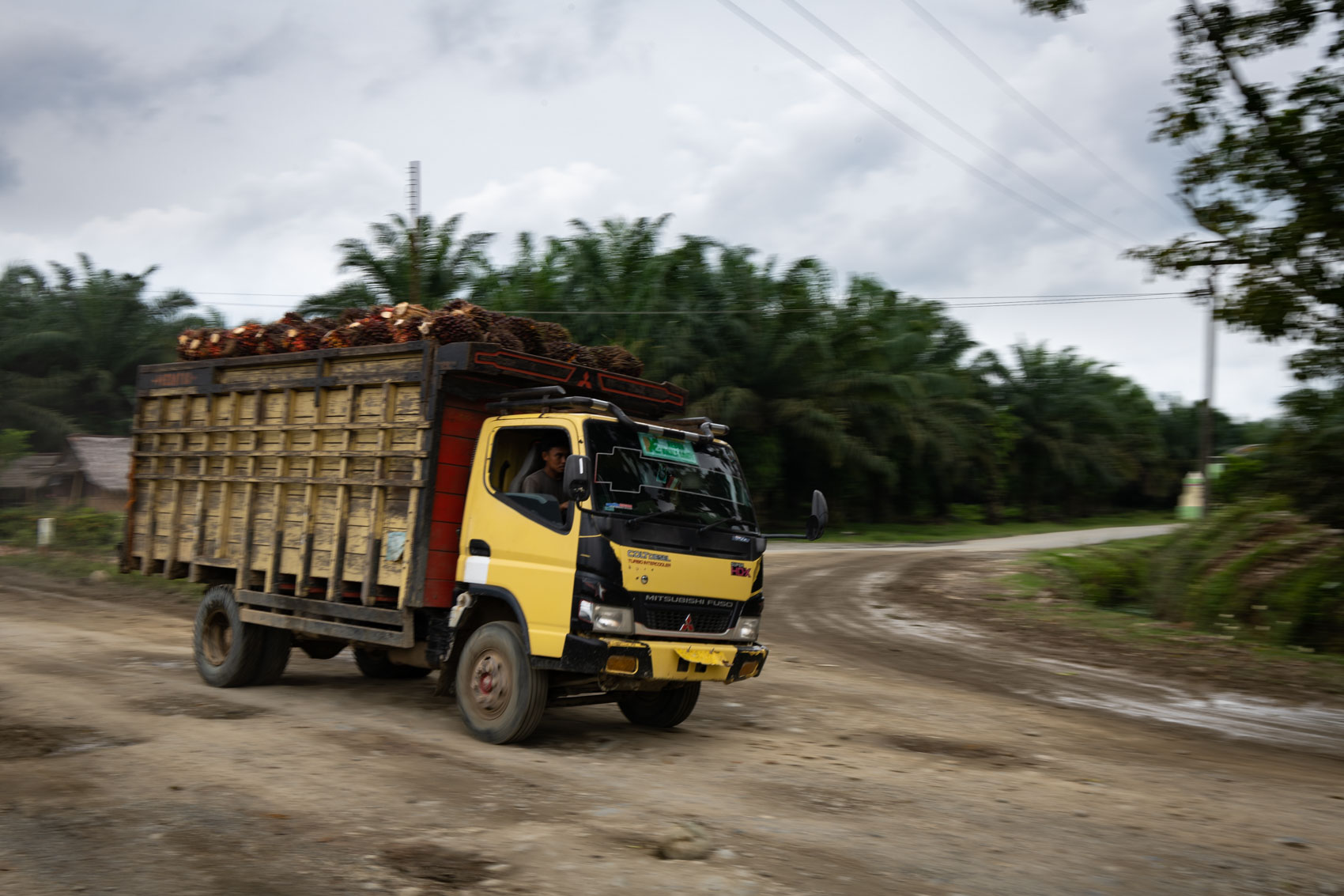 A truck filled with palm oil drives through a dirt road in Northern Sumatra, Indonesia