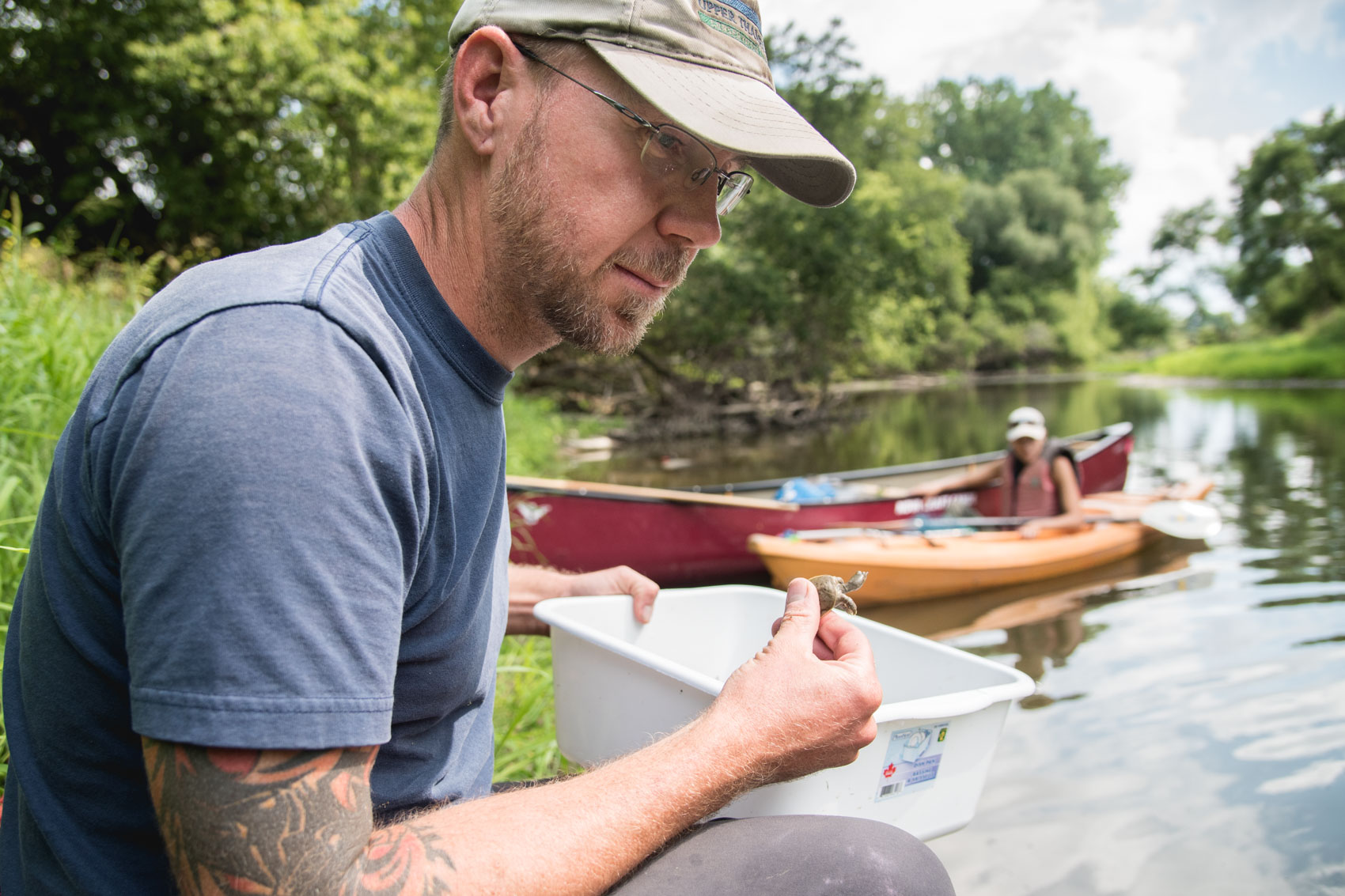 Biologist Scott Gillingwater holds a baby softshell turtle in the Upper Thames River