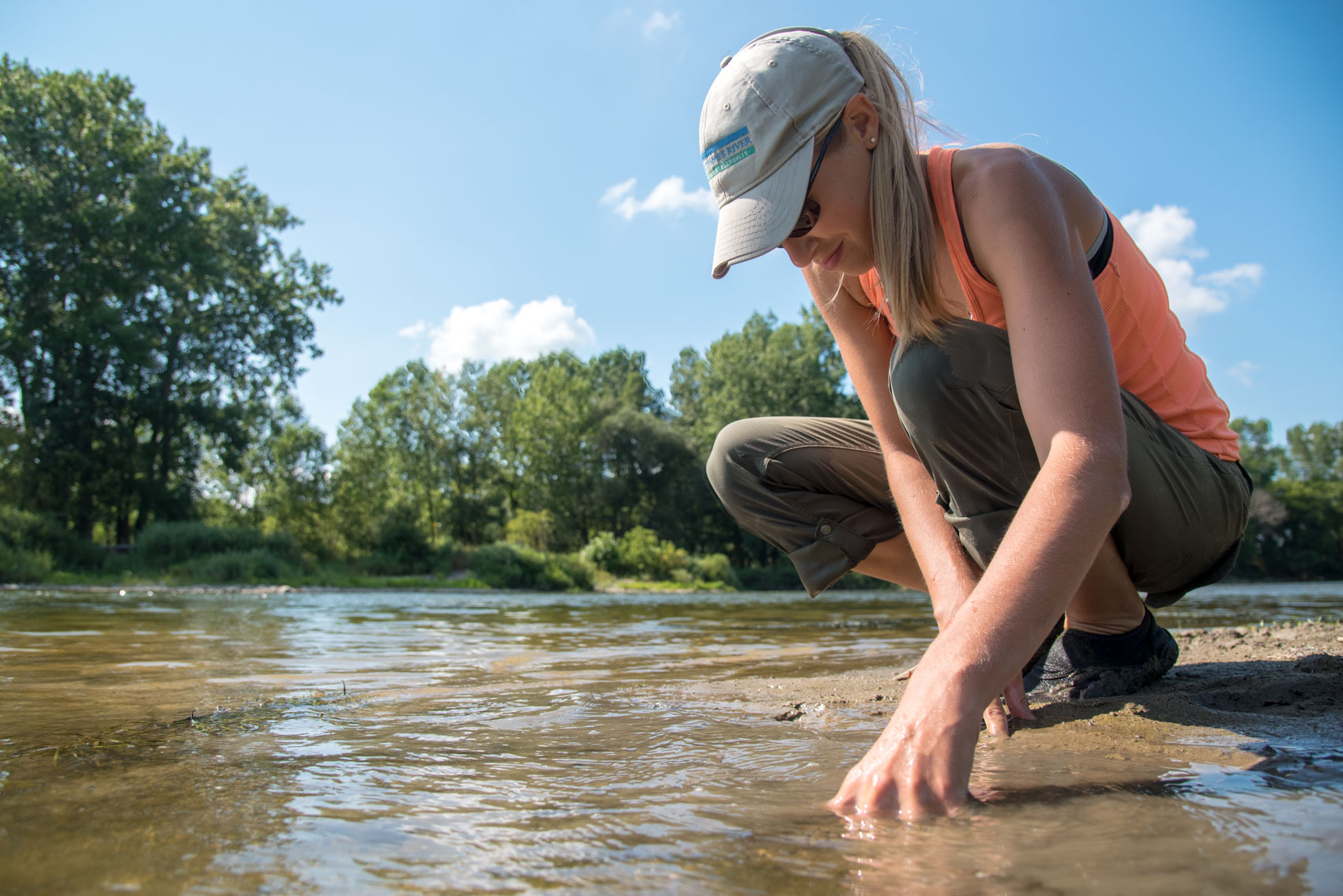Research assistant sticking hands in river sand to check for turtles in the Upper Thames River