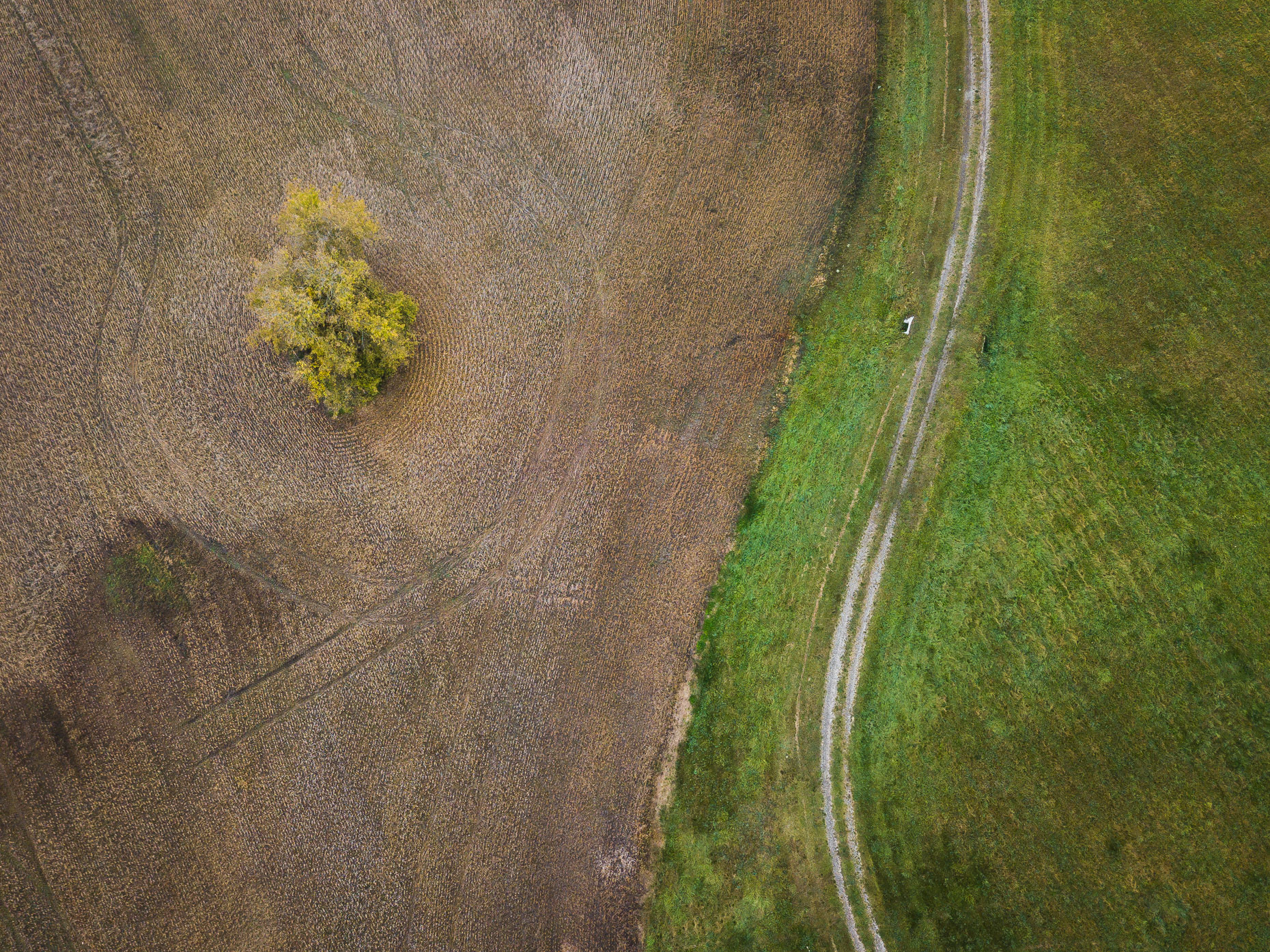 David_Coulson_Aerials13-Caledon